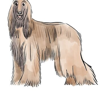 Afghan hound cute illustration by Extreme-Fantasy