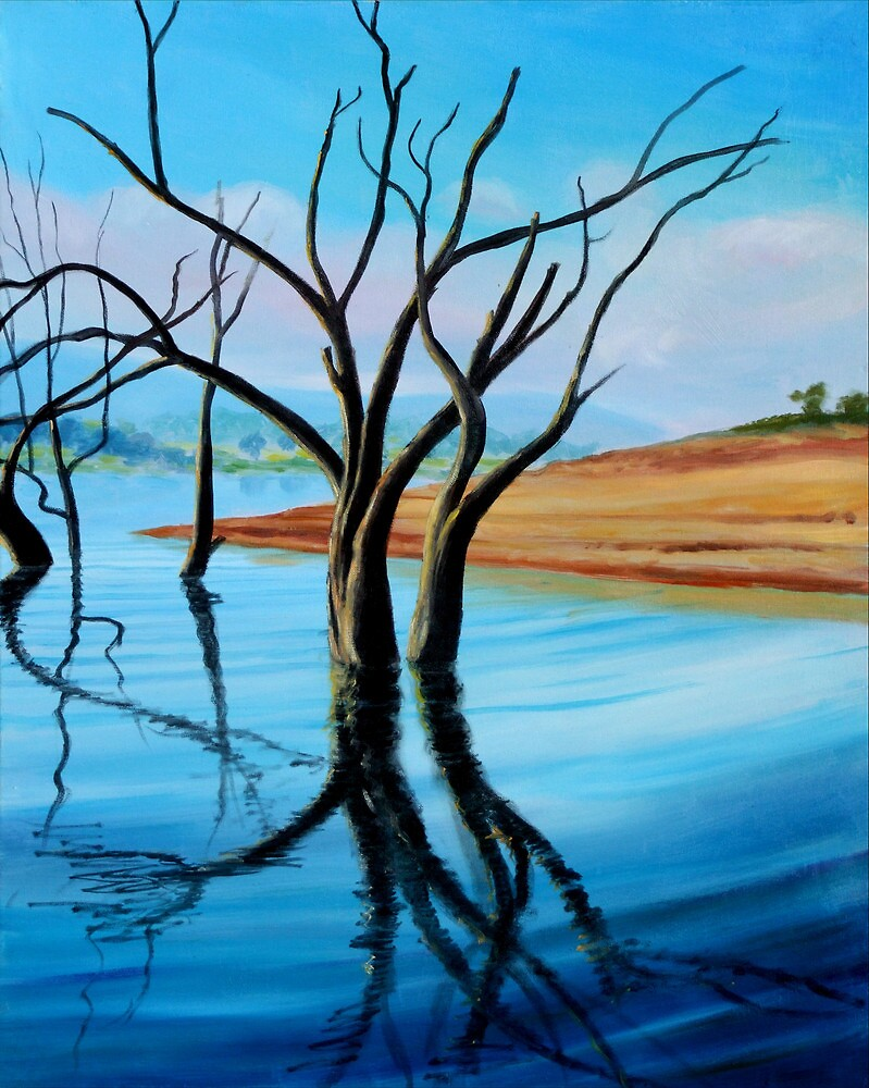 LAKE NILLAHCOOTIE, VICTORIA by HAMISH CUMING