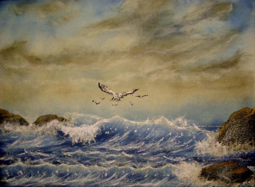 seagull ocean by jentson