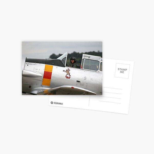 T-6 Harvard Pilot Postcard