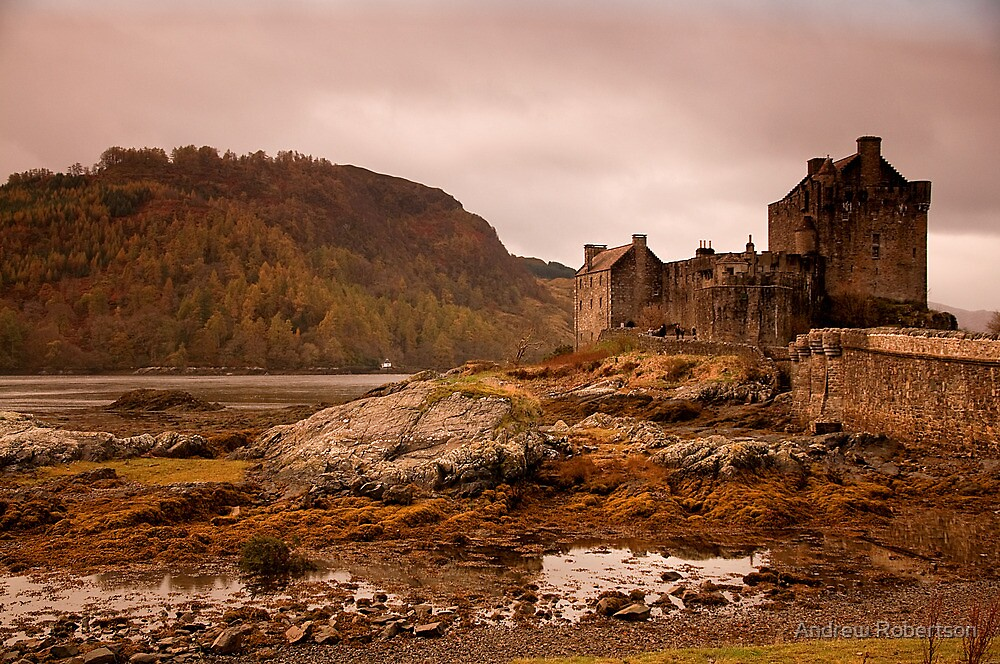 Highland Castle by Andrew Robertson