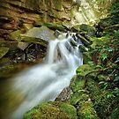 Wurragarra Creek, Tasmania by Kevin McGennan