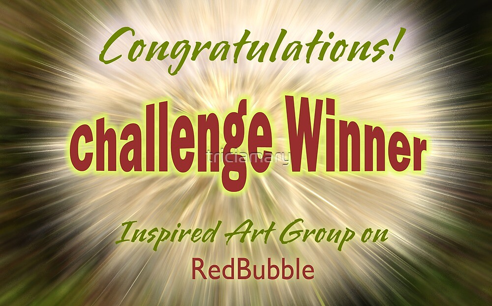 Inspired Art Challenge Winner banner by triciamary