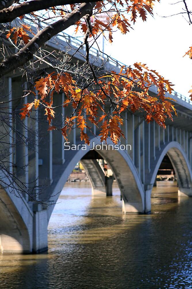 Bridge in Late Fall by Sara Johnson