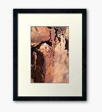 Decay Framed Print