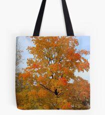 Autumn Tree In Minnesota Tote Bag