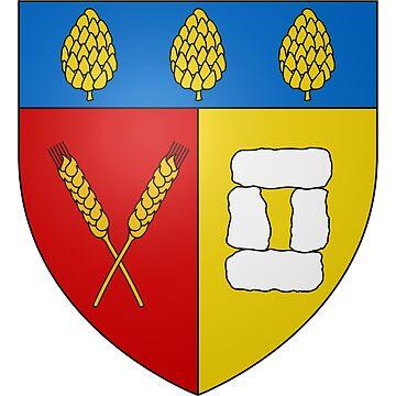 French France Coat of Arms 15278 Blason ville fr Saint Salvy de la Balme Tarn by wetdryvac