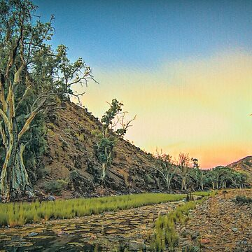 Parachilna Gorge by DVJPhotography