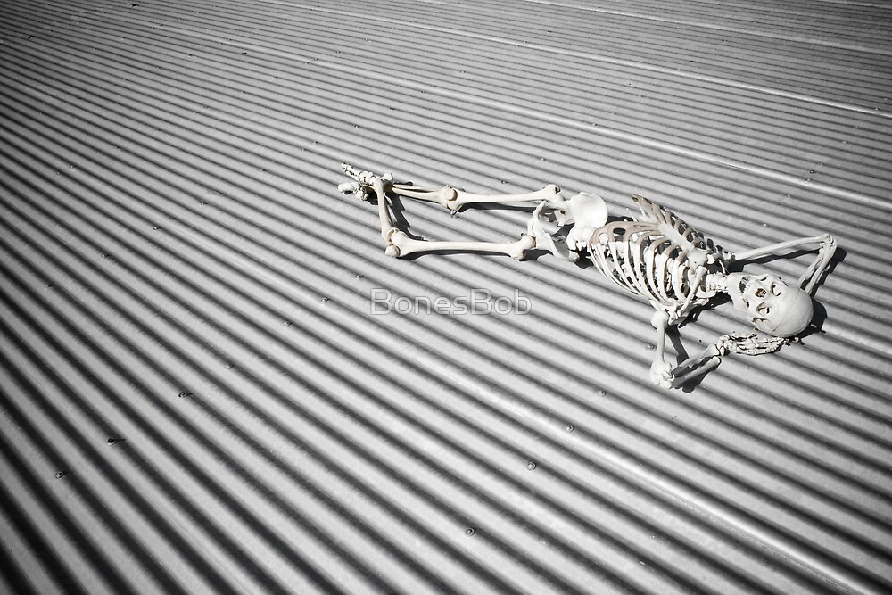 Nude Fashion Shoot I by BonesBob
