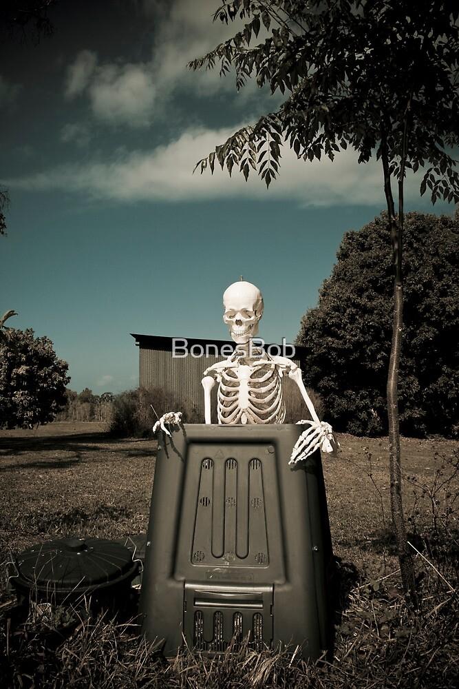 Slowly Decomposing by BonesBob