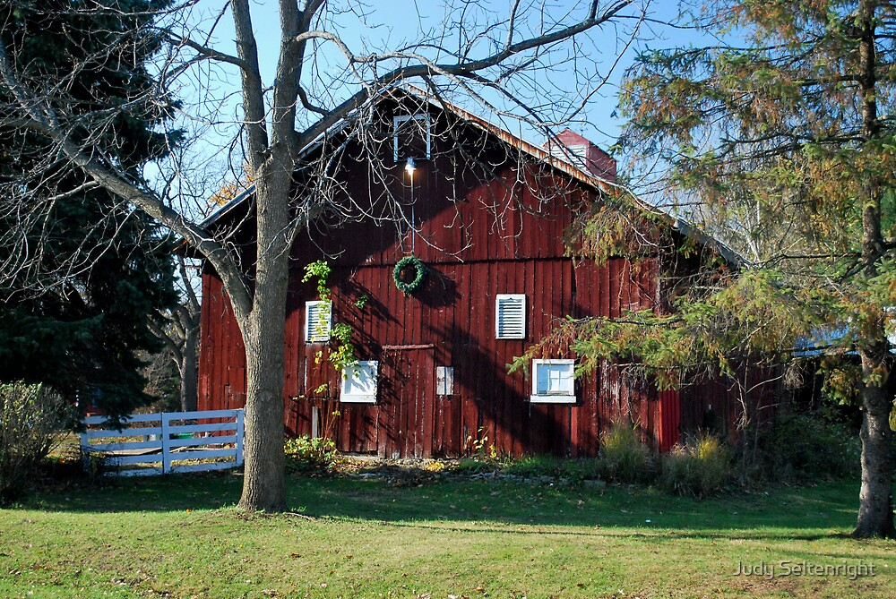 This Old Barn by Judy Seltenright