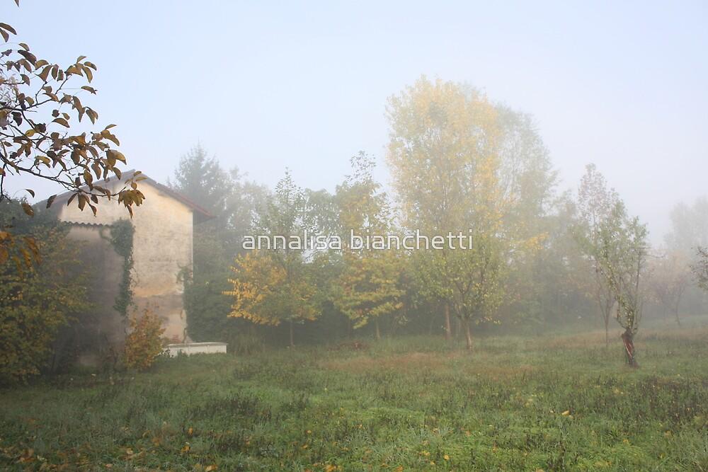 The fog goes away by annalisa bianchetti
