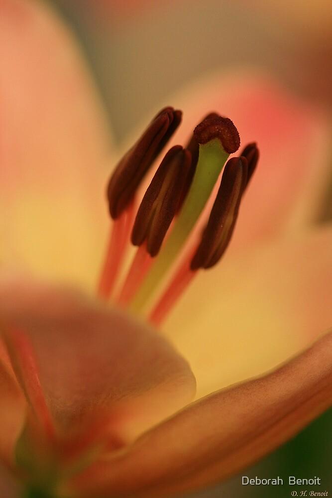 Soft And Pure by Deborah  Benoit