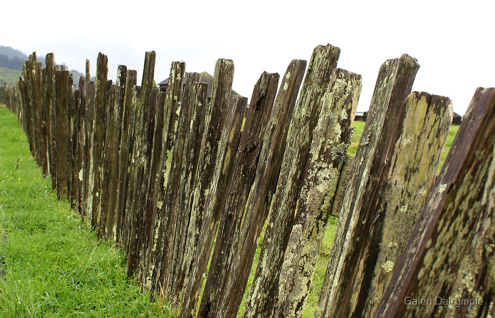 Fences by Galen Dalrymple