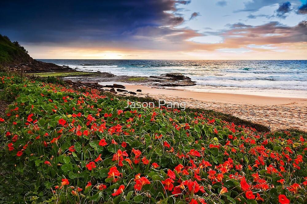 Flowers of Bungan Beach by Jason Pang