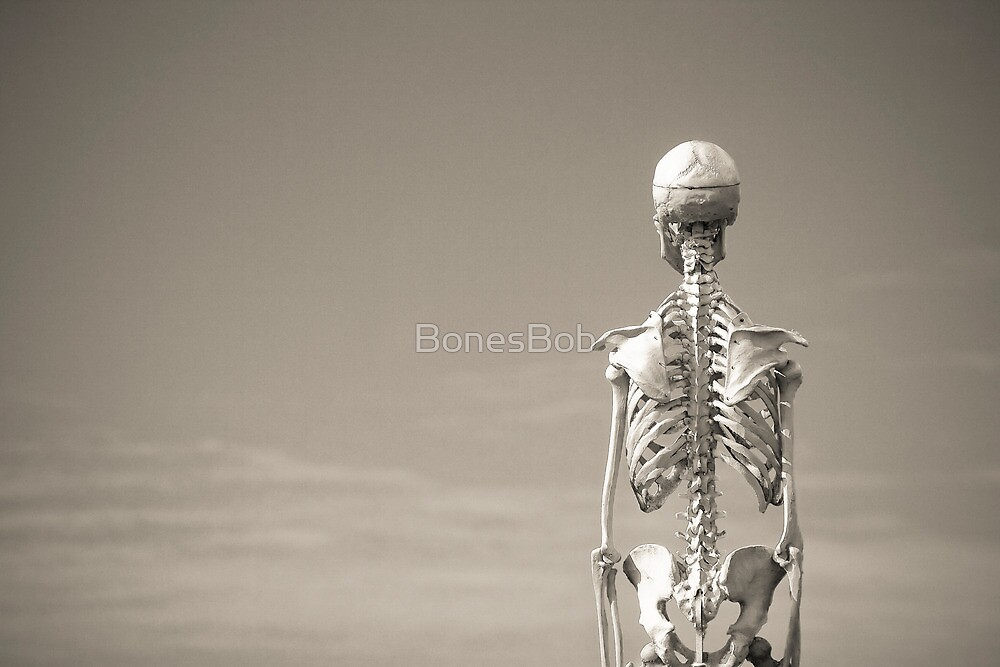 Looking to the Future by BonesBob