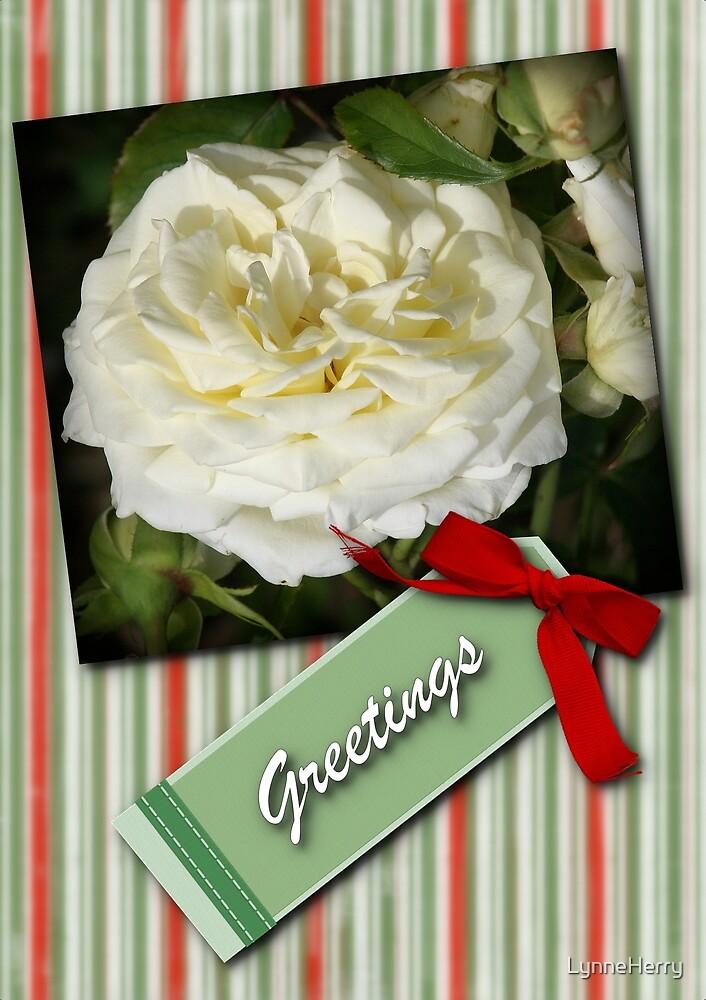 Striped Greeting Card by LynneHerry