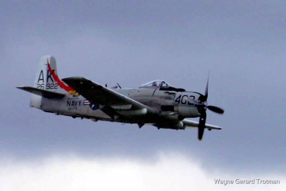 Skyraider! by Wayne Gerard Trotman