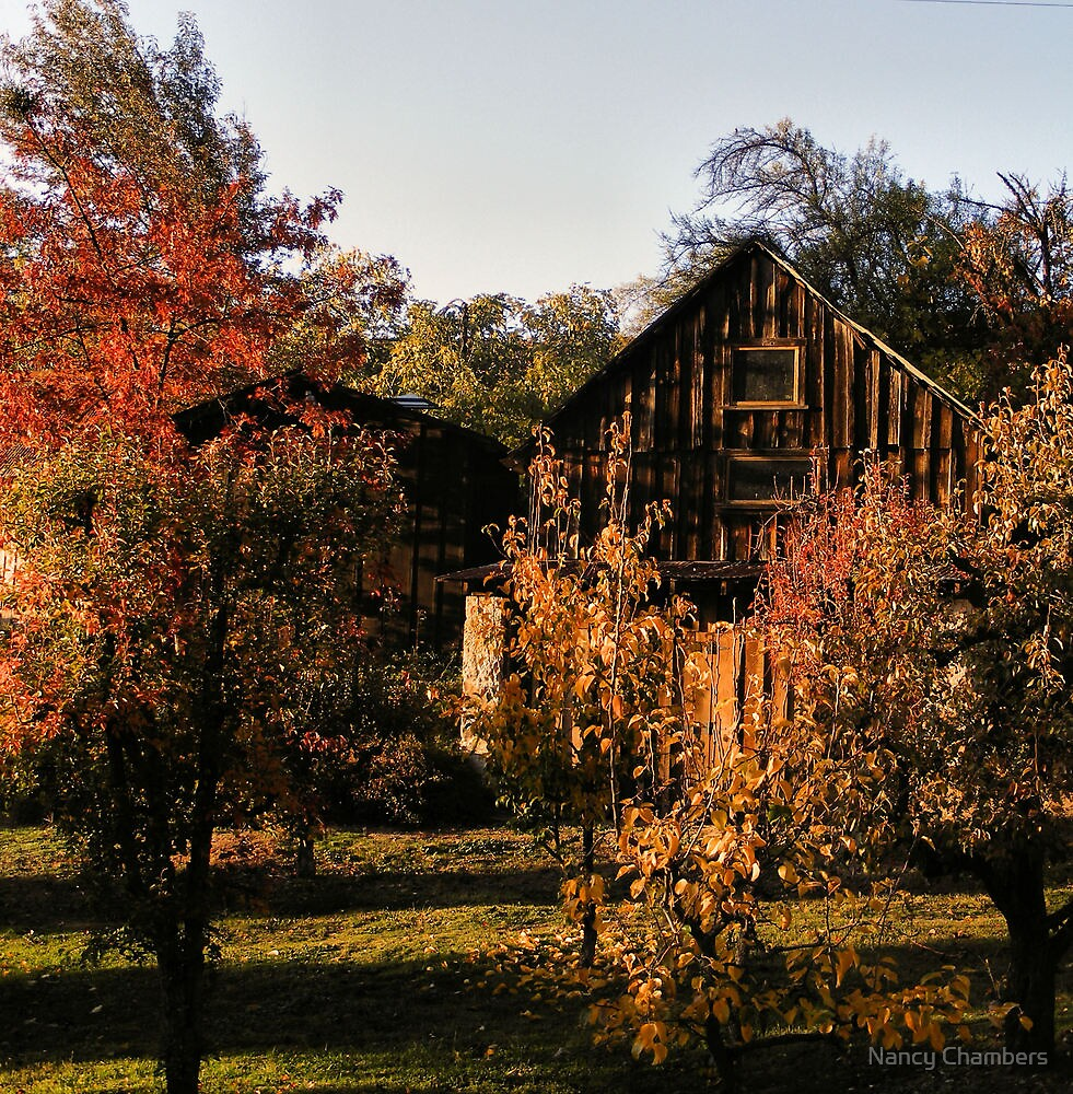 Boeger Winery Barn by NancyC