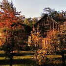 Boeger Winery Barn by NancyC