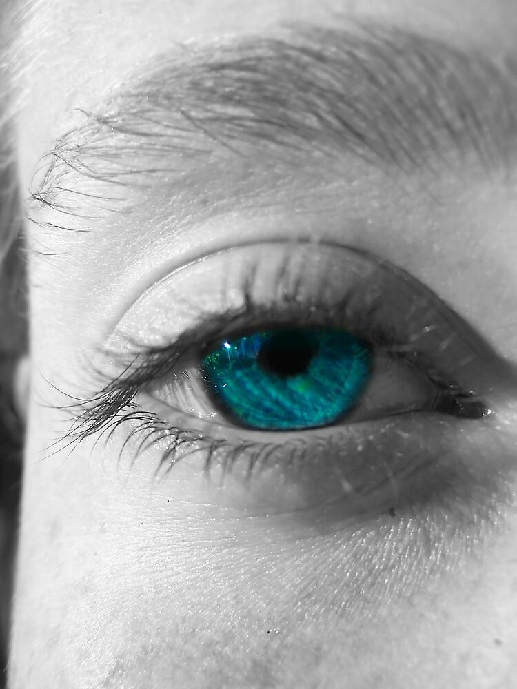 Through her eyes by Raquel Perryman
