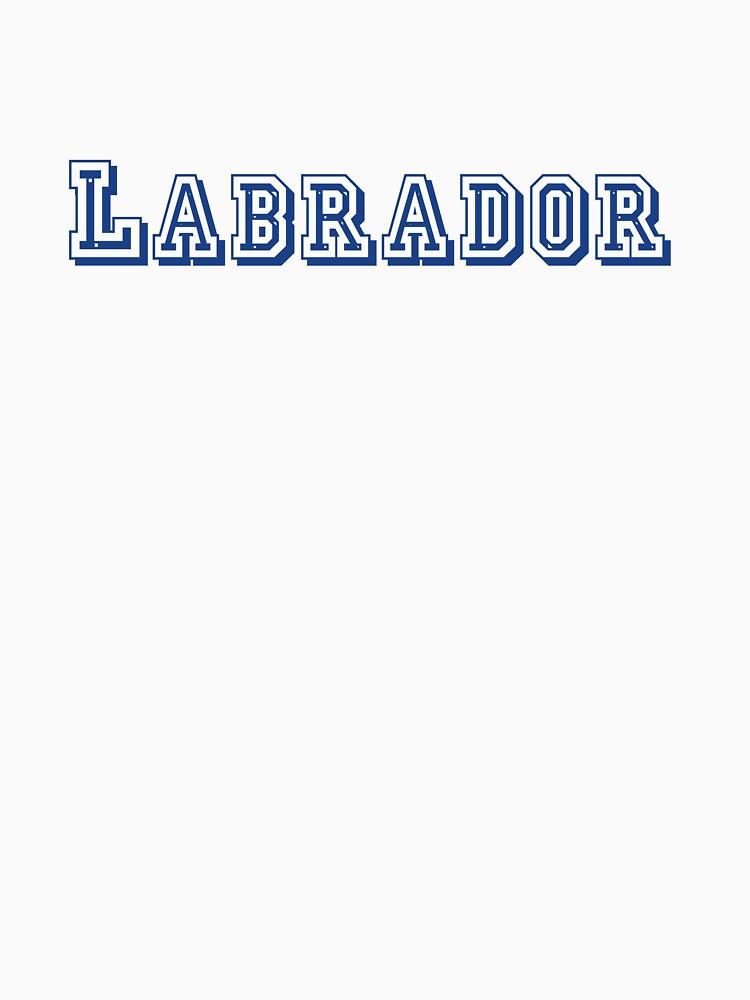 Labrador von CreativeTs