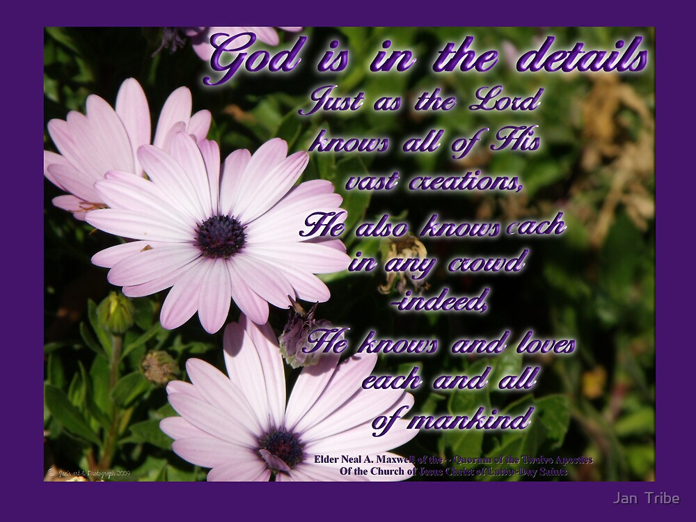 God is in the Details  by Jan  Tribe