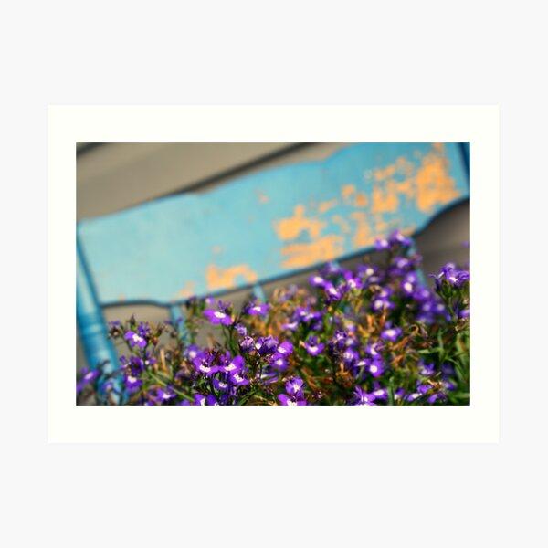 Purple Flowers~ Art Print