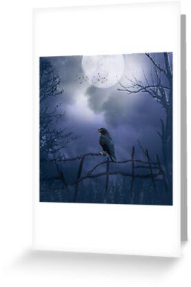 Night raven by sunshine0