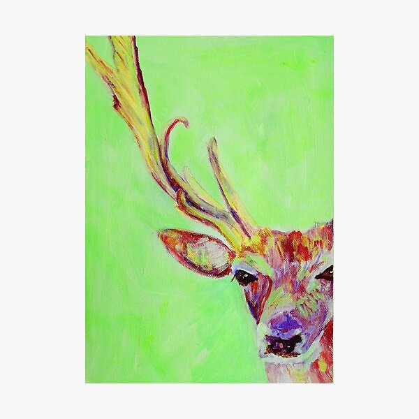 Lime green red stag Photographic Print