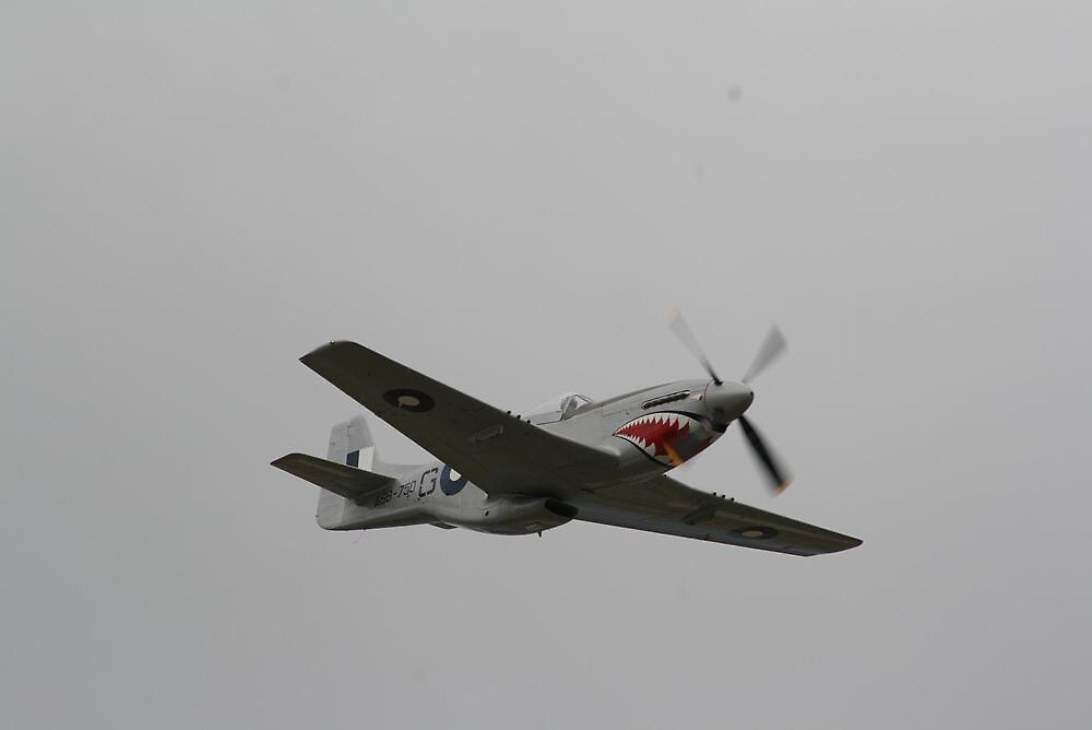 P51 Mustang Flyover by Peter Bagehorn