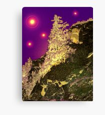Marry Christmass Canvas Print