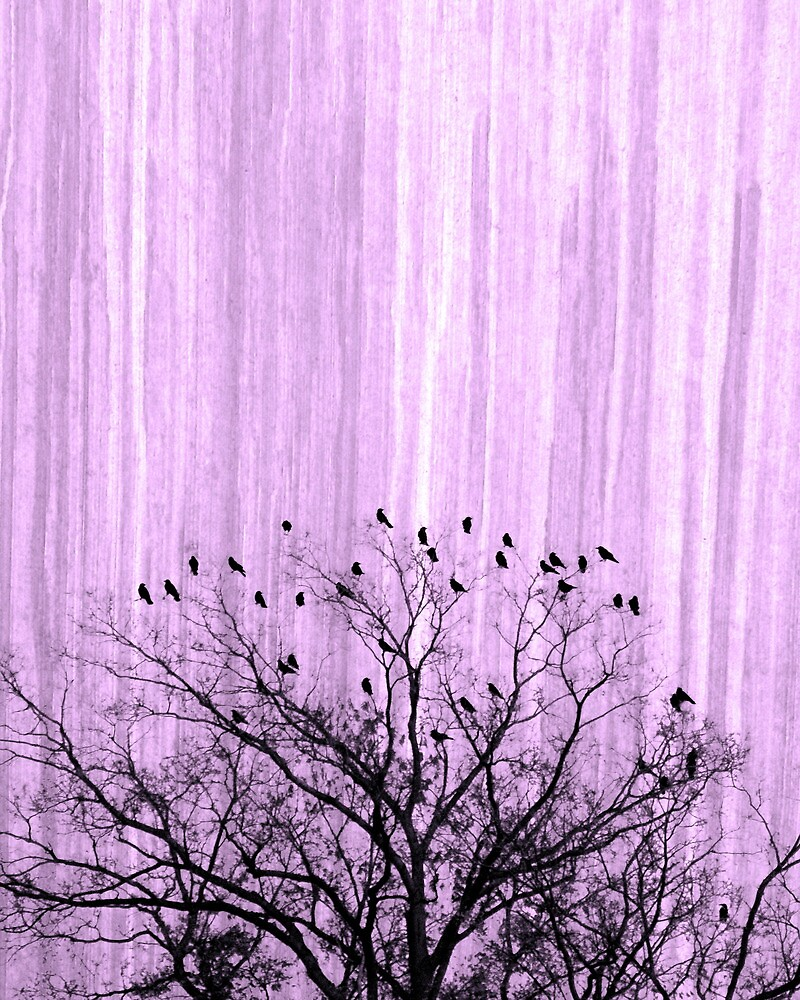 birds of a feather by ghoegner
