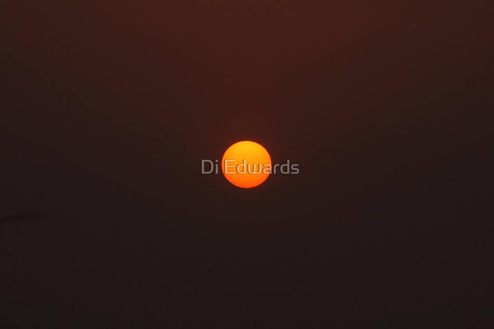 Orange Bubble by Di Edwards