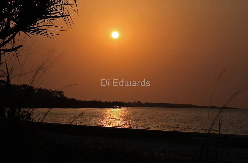 Burnt Orange by Di Edwards