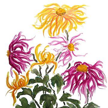 reddish purple and yellow chrysanthemum  by ColorandColor
