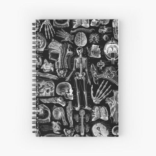 Human Anatomy Black Print Spiral Notebook