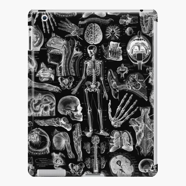 Human Anatomy Black Print iPad Snap Case