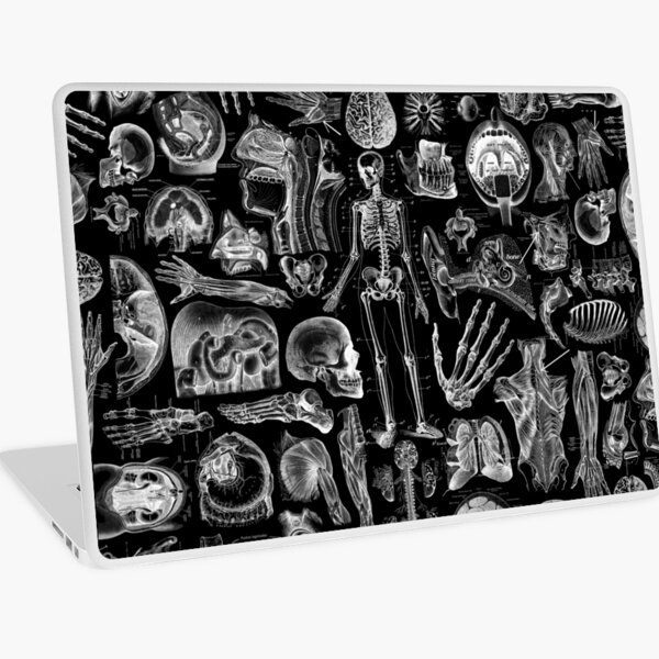 Human Anatomy Black Print Laptop Skin