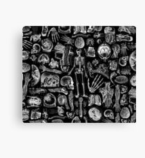 Human Anatomy Black Print Canvas Print