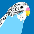 Blue Budgie Bird Portrait by Adam Regester