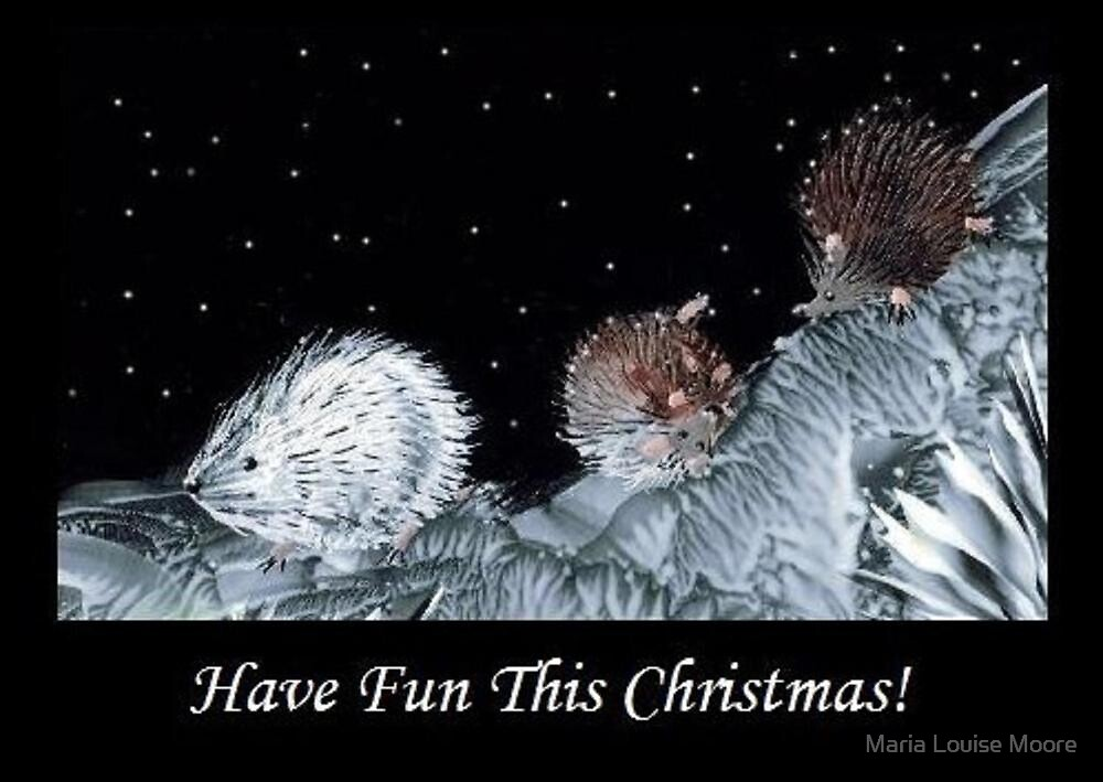 Have Fun This Christmas! by Maria Louise Moore