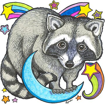 Cosmic Raccoon by LyndaBell