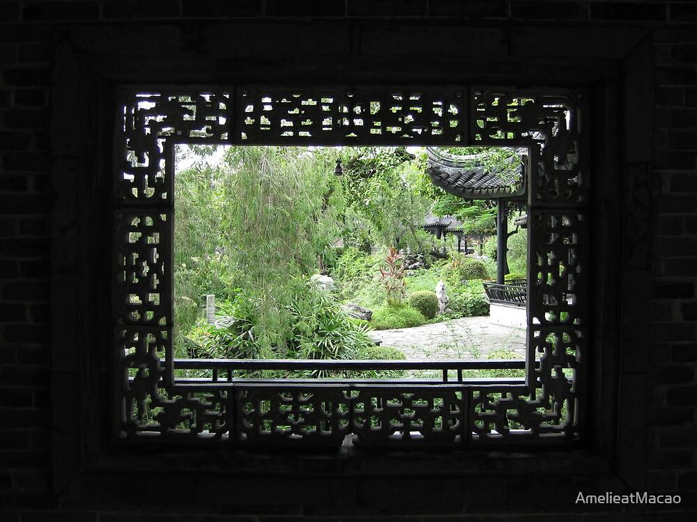 Window by AmelieatMacao