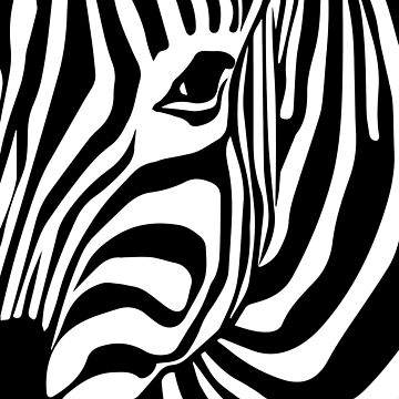 Zebra Abstract  by adelemawhinney