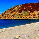 Hearson's Cove by Sheldon Pettit