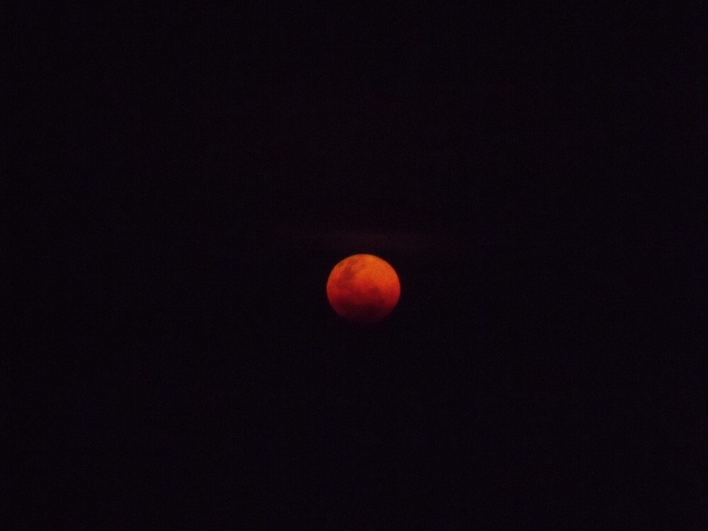 Red Moon over Dungog by Judy Woodman