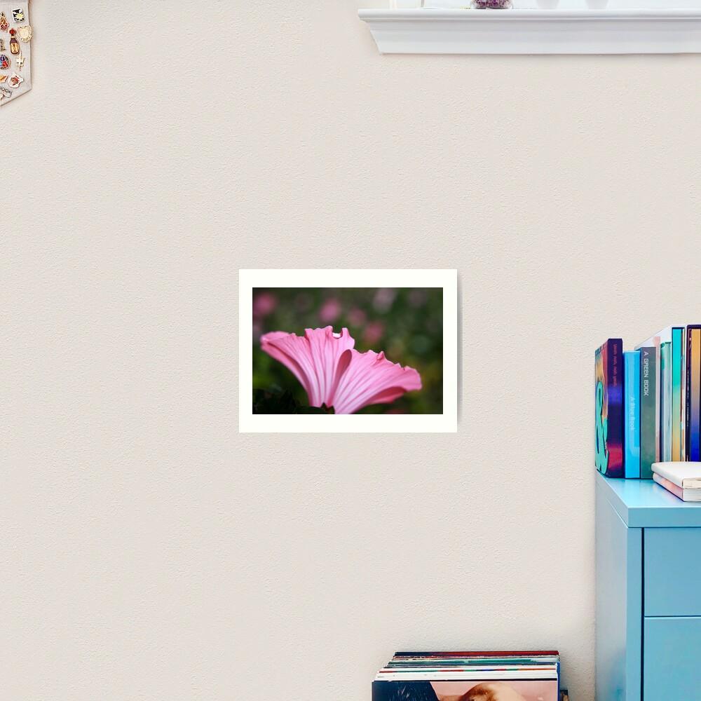 Delicate Pink. Art Print