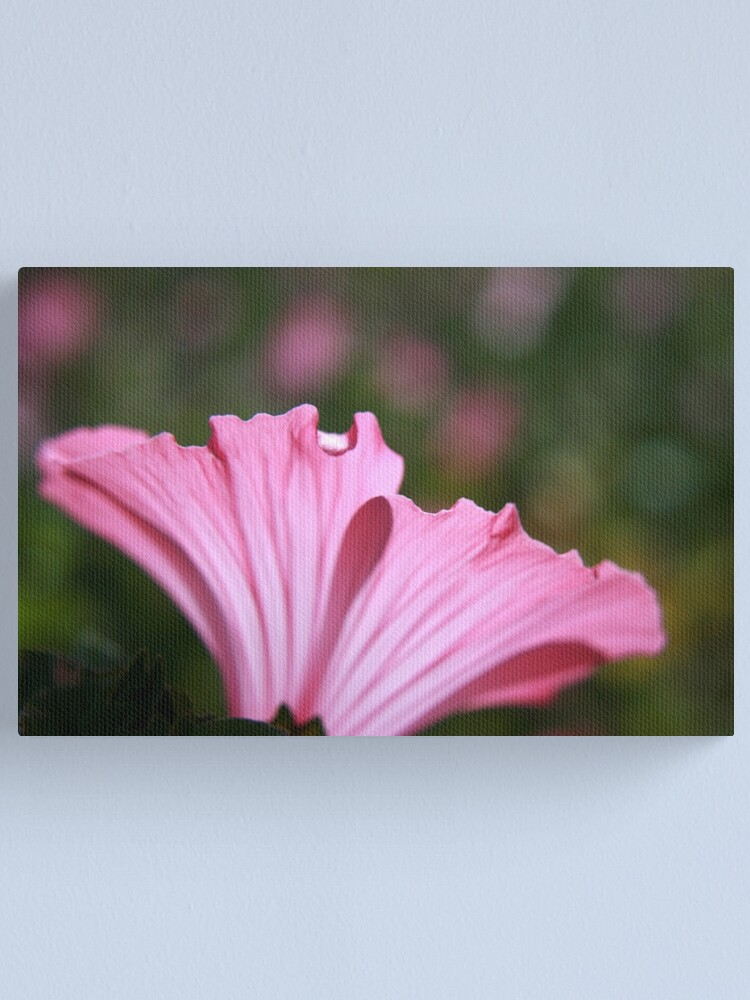 Alternate view of Delicate Pink. Canvas Print