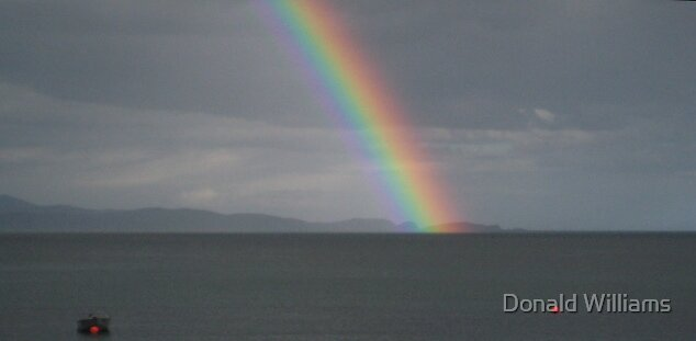 Rainbow at dusk by Donald Williams